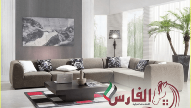 Photo of شركة تنظيف كنب بالبخار الحلاة بالفجيرة